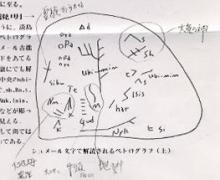 淡島神社のペトログラフ